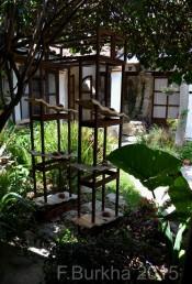 esculturas - casa F-Burkha agosto-2015 03