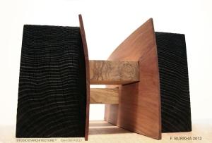 STUDIO-ARCHITECTURE_F-Burkha_PUENTES_2012