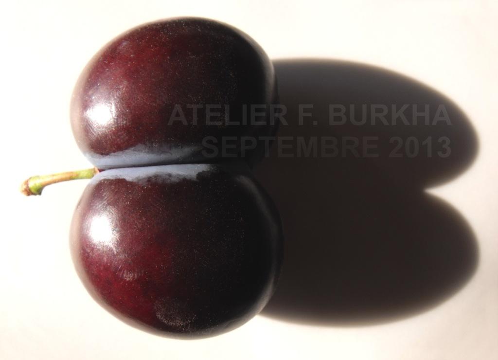 atelier-f-burkha-septembre-2013_le-fruit_01