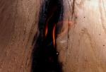 identité feu f burkha 2013