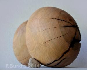 F Burkha automne (3) 2014