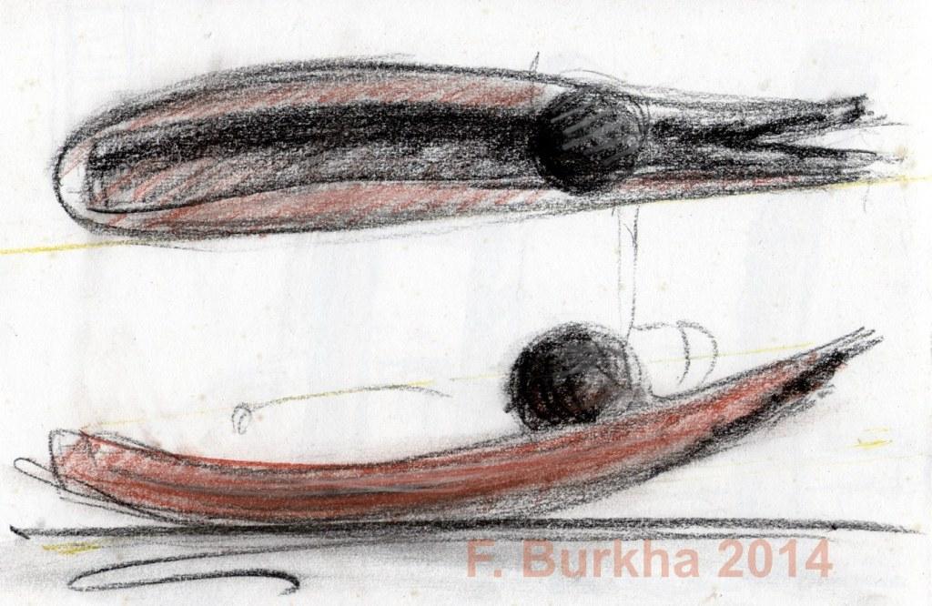 F Burkha esquisse pierre noire 2014