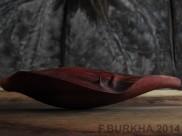 F BURKHA 2014 enredadera 01